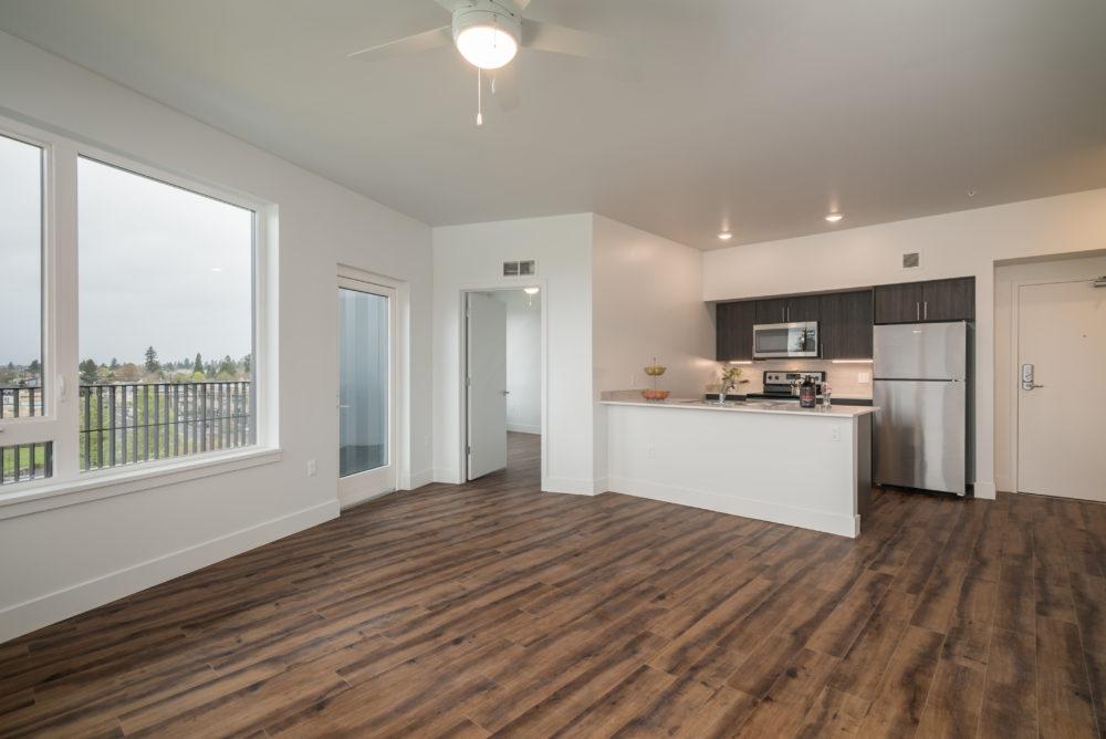 Big living room apartment