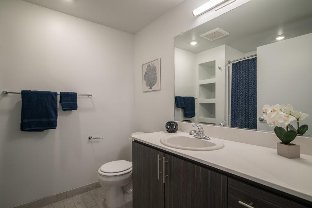big bathroom apartment